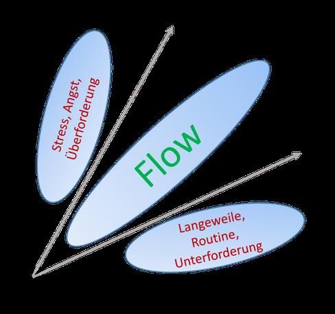 Projektmanagement Flow Kompetenzmodell