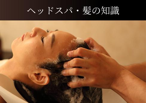 ヘッドスパ・髪の知識