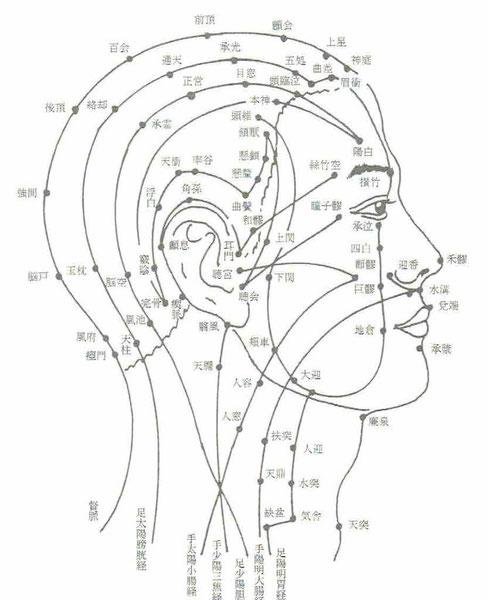 人体の経気は経脈などによって頭面部に集中していることが指摘されています。