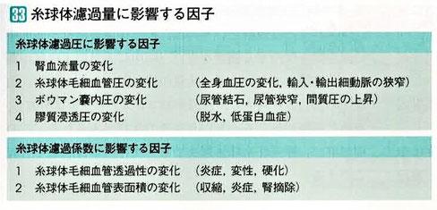 糸球体濾過量に影響する因子
