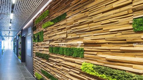 Moderne 3D Kunststoff Holzpaneele Mayon