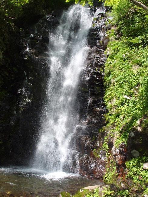 大滝・・・さすが雪解け時期、水量が多く迫力満点です