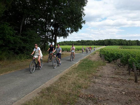 bike-ride-and-wine-tasting-local-food-Loire-Valley-Vouvray-Amboise-Tours-Amboise-Myriam-Fouasse-Robert-wine-tours-original-and-unique-genuine-experience