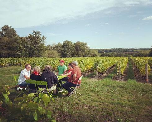 winet-tour-wine-tasting-Loire-Valley-vineyard-Vouvray-original-activity