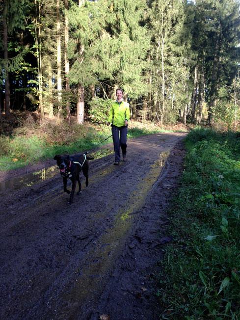 Crosslaufen mit Emma, CaniCross, Zughundeschule