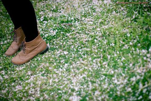 桜が散ったからこそ撮れる写真もある
