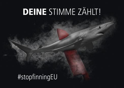 www.stop-finning.eu