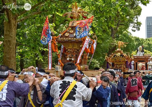 日比谷大江戸まつり2019, お祭りパレード, 神輿渡御, 参加できます