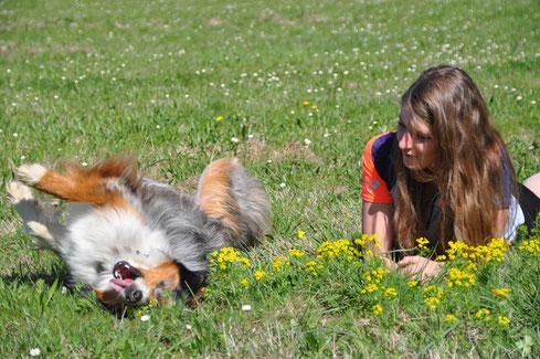 chien, complicité, berger australien, running, canicross, sport, kalendji