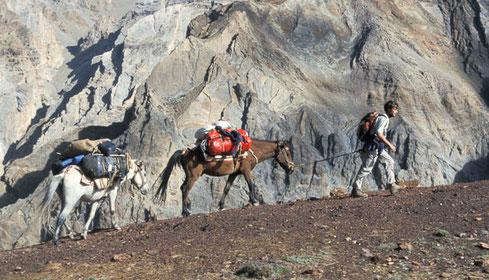 Thomas Zwahlen, Trekking in Ladakh, mit eigenen Pferden