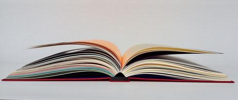 Anne Goy, reliure d'art, design du livre, livre de couleur , color book,  bibliotheca Wittockiana, book design, bookbinding