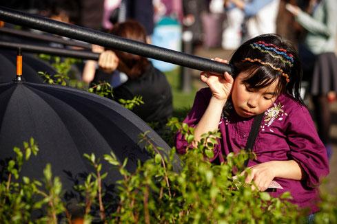 Sakura Zensen - Japon - 2013 ©Christophe Raynaud de Lage