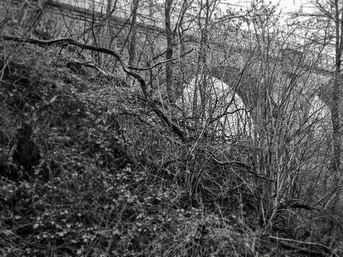 """die """"Saubrücke"""""""