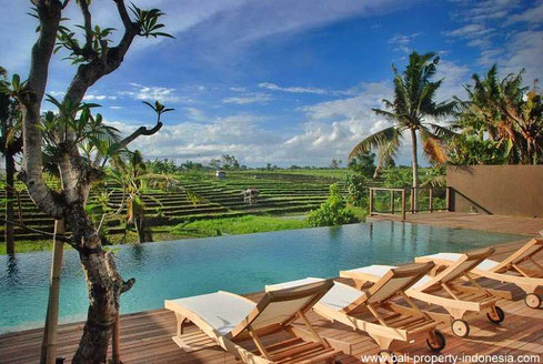 Canggu villas for sale.