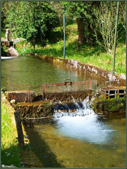 Petite écluse et un des ruisseaux à la Pisciculture des Sources à Laruns, Vallée d'Ossau (64)