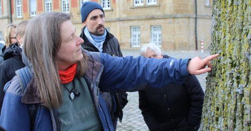 Dr. Helga Bültmann erläutert die Flechten an einem Baumstamm vor dem Schloss