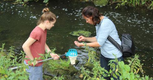 Karin Wilp (rechts) und Ulrike Moser fischten im Trüben nach den  Wasserpflanzen