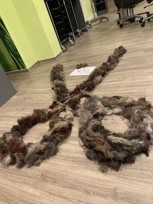 Wir haben eine Woche lang alle Haare gesammelt und daraus auf dem Fußboden eine überdimensionale Schere gelegt