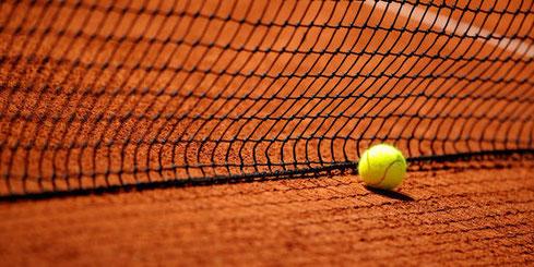 image-tennis-gite des pindouls-toulouse
