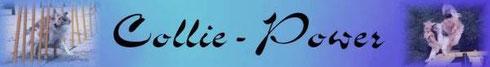 unseren Banner zum verlinken