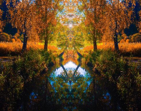 Das Wunder der Natur wurde durch die Fotografie und Nachbearbeitung sichtbar gemacht.