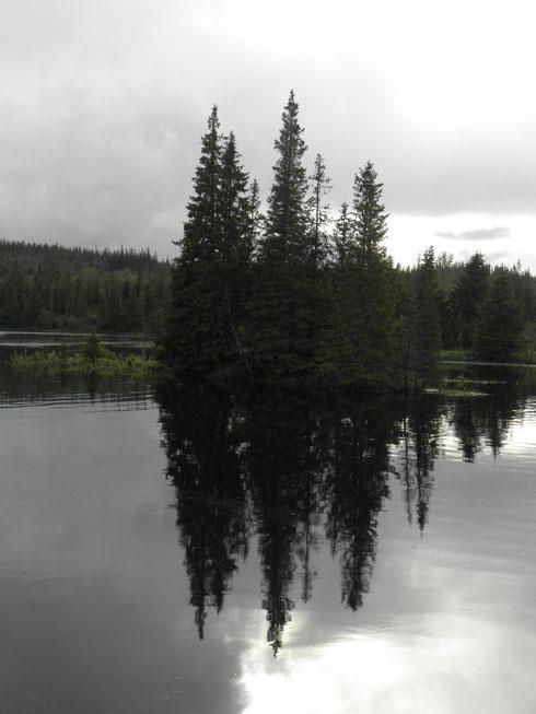 An der Tya in Sør-Trøndelag (N).