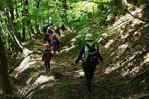 木漏れ日さえもまぶしい秋晴れの弓坂ハイキング