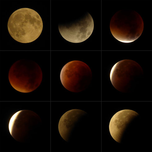 """Totale Mondfinsternis vom 28.09.2015 (alle Fotos wurden mit einer tz61 aufgenommen und nicht weiter bearbeitet - außer auf die gleiche Größe gebracht und mit der Freeware """"PhotoScape"""" zu einem Mosaik zusammengefasst)."""