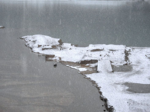 07.01.2016 - zwei Häuser von Alt-Fall im Schneegestöber