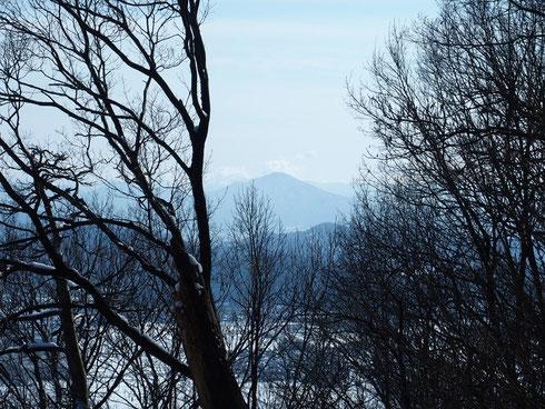 日野山は林の間にましました