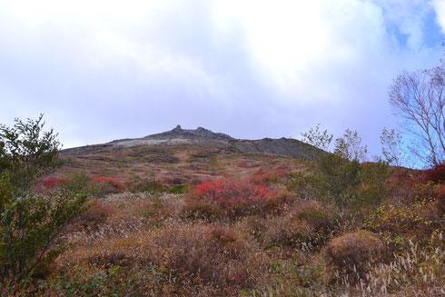 山頂の素晴らしい景観です。                                        紅葉のピークだったらそれはそれは見ごたえある自慢の写真になったでしょう