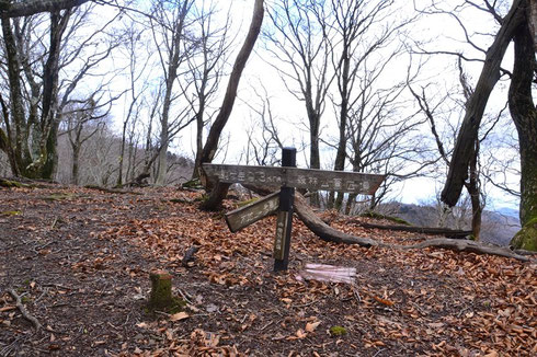 左手は福井からの登山ルート:森林公園方面です