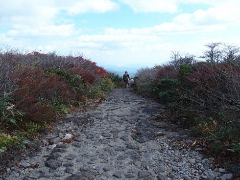 下山の中央コース:山頂直下は階段がしばらく続く。そのあとはこんな舗装道が真直ぐに登山口まで。写真では分かりづらいが真直ぐの為急坂だし、ぐり石に躓くので下を向いていないと危ない。景色を楽しむどころでない。閉口しました・・・