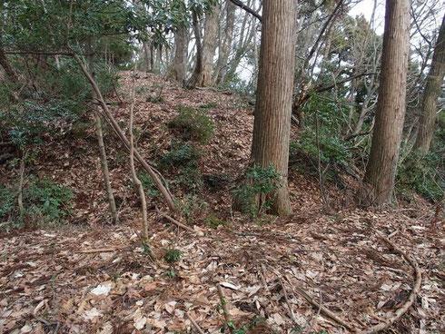 いつの時代だろうかたぶん砦があったのだろう周囲は堀切でした。