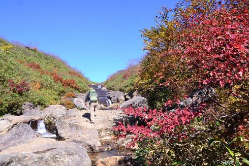 登山道を登り切ると あっと!! 声がでた。         なんと素晴らしい滑床(渓谷または滝)ではないか。         渡渉を繰り返し100mほど登ると右側に尾根に向かう道がある。   そこを登り切ったところが東栗駒山への尾根(最初の写真の場所)