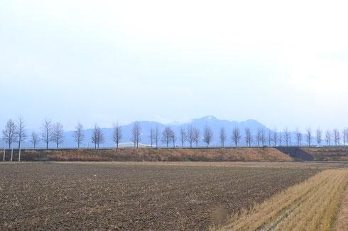 平成26年正月の文殊山です