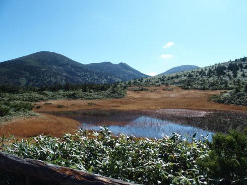 ロープウェイ山頂駅からしばらく歩くと田茂やち湿原へ