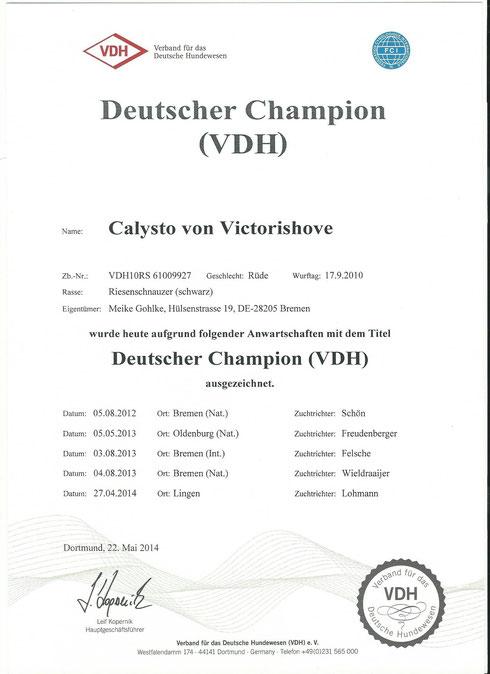 Deutscher Champion VDH Calysto von Victorishove
