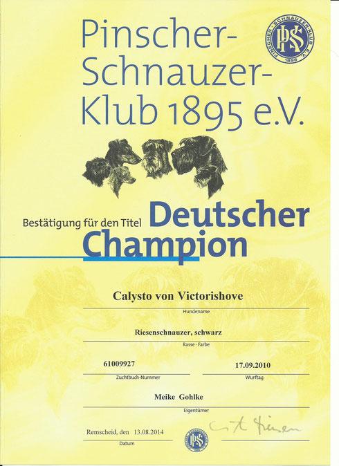 Deutscher PSK Champion Calysto von Victorishove