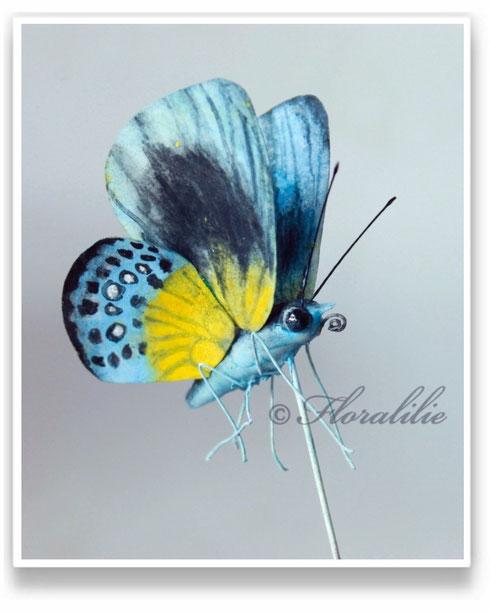 Schmetterling von Floralilie