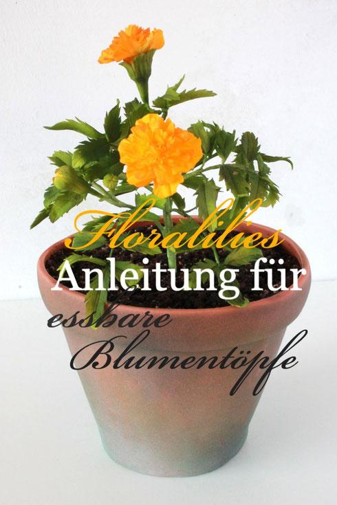 blumentopf torte floralilies zucker seite. Black Bedroom Furniture Sets. Home Design Ideas