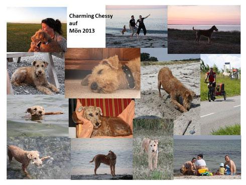 Celtic Crackers Charming Chessy im Urlaub mit der Familie