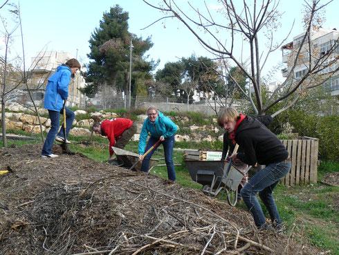 Gemeinsam aktiv: Community Gardening