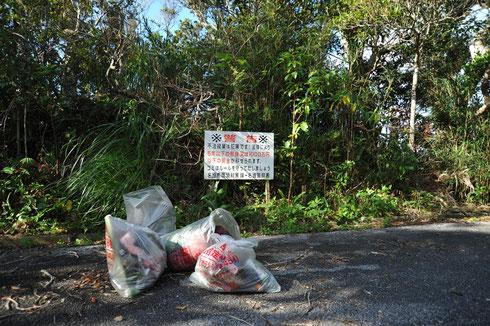 名護岳には不法投棄に対する警告があちこちにありますが、心無い人はなかなか減りません。