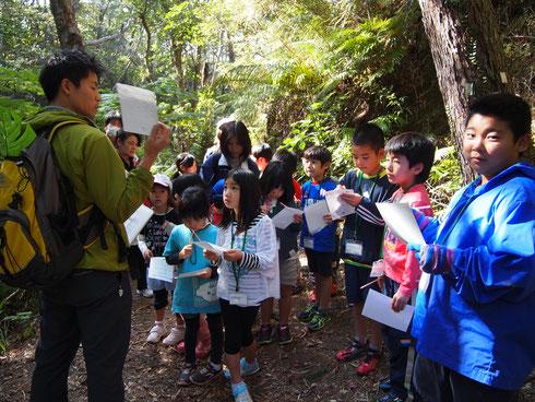 今回初の取り組みとなった「ネイチャーゲームin名護岳」も満員御礼。みんなで名護岳の自然を五感を研ぎ澄まして味わいました