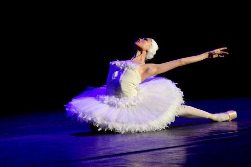 """Ballett Kiel """"DER STERBENDE SCHWAN"""" (Marina Kadyrkulova)"""