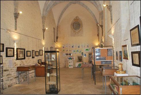 exposition Marcellin Boule au réfectoire des moines de Montsalvy