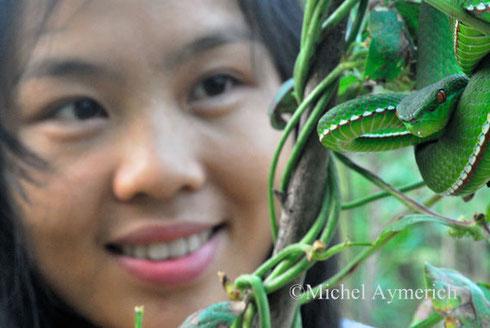 Xinghe et une vipère des bambous ©Michel Aymerich