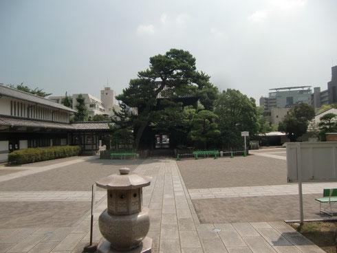 泉岳寺本堂からの風景。中央の松の奥に山門があります。そしてその向こうに8階建てが建つと、この景色は全く変わったものになってしまいます。