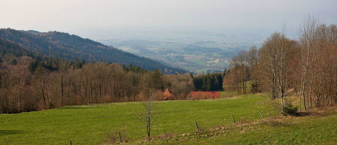 Bei schönerem Wetter wäre eine Aussicht bis in die Donauebene möglich gewesen. So aber konzentrierte sich der Blick auf die Bucher Kommunalpolitik.